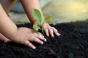 tree sapling Baby Hand On the dark ground, the concept implanted children's consciousness into the environment photo