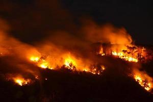 Environmental disaster, Forest fire photo