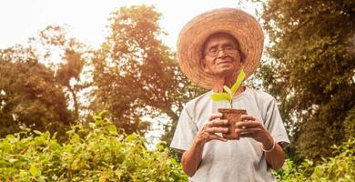 Asian senior holding a seedlings growing in the nursery bag. Nature conservation concept photo