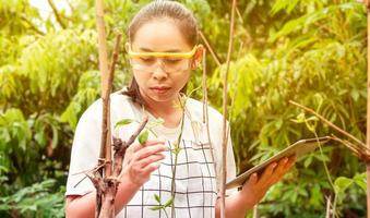 Young female farmer standing in green long beans farm with tablet in her hands and examining crop. photo