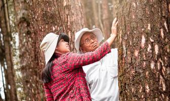 An adult daughter with senior father touching a tree in the woods. Earth's day concept with people protecting the trees from deforestation. photo