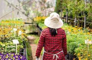 Rear of a happy female farmers with a tablet in her hand working in the greenhouse. Modern technology for farmers and floriculture. photo