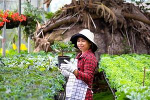 A happy female farmers with a tablet in her hand stands near a flowers in the greenhouse. Modern technology for farmers and floriculture. photo