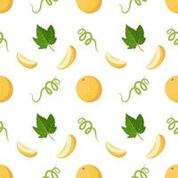 Seamless pattern with melons, curls and leaves. Cute summer print with whole and half fruits. Festive decoration for textiles, wrapping paper and design vector