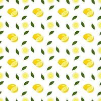 Seamless bright spring and summer pattern with lemon and slices on a white background. A set of citrus fruits for a healthy lifestyle vector