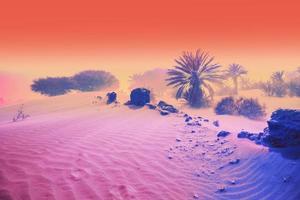 The colorful retro vaporwave landscape photo