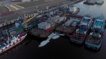 flyg över båtarna i flodhamnen video