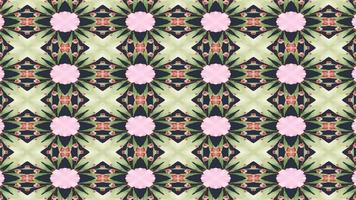 abstrakter grüner und rosa Kaleidoskophintergrundoscope video