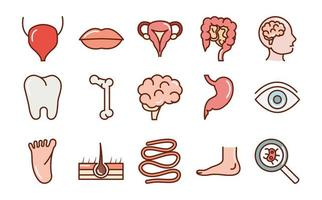 human body anatomy organs health mouth eye foot tooth brain bone icons collection line and fill vector