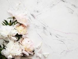 Pink peonies on a marble background photo