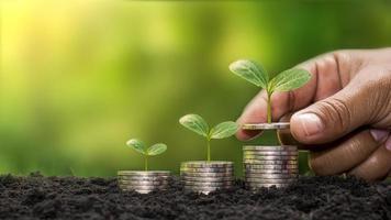 plantar un árbol en una pila de dinero, incluida la mano de una mujer que sostiene una moneda contra un árbol en la moneda, ideas para ahorrar dinero e invertir en el futuro. foto