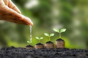 Las manos están regando las plantas en crecimiento en monedas en medio de un fondo verde borroso de la naturaleza, el concepto financiero y el beneficio de la inversión financiera. foto
