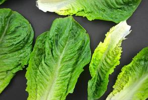 Fresh Romaine or cos lettuce leafy green vegetable flat lay on black background photo