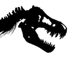 Skeleton of Tyrannosaurus rex  T-rex  Skull and Neck  . Vector .