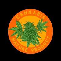 cannabis plant,premium vector