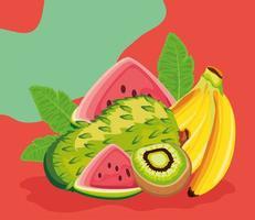 tropical fruits, soursop, kiwi and banana vector