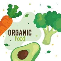 banner with organic food, fresh vegetables, concept healthy food vector