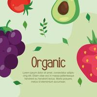 banner with organic food, vegetables and fruits, concept healthy food vector