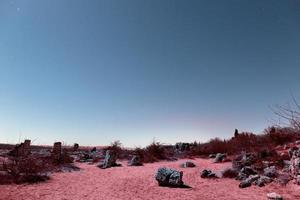 el paisaje estético retro vaporwave foto