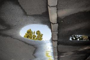 Inverted view of a wet asphalt road with a tree reflection in a puddle photo