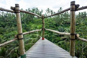The Bali Swing area in Indonesia photo
