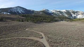 prise de vue aérienne d'un sentier de jeune femme qui court dans les montagnes. video