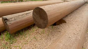 Wood pole for building structure photo