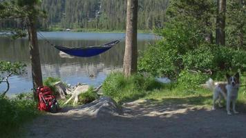 una hamaca vacía cerca de un lago de montaña. video