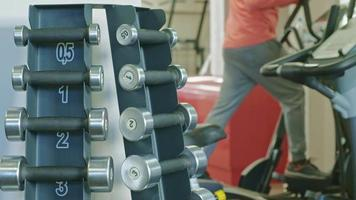 Stand with dumbbells in the gym video