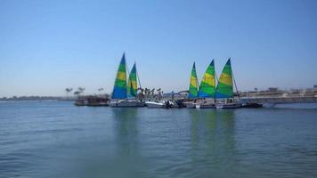 veleros en Mission Bay, San Diego, California. video