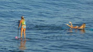 una joven sup surfeando en bikini sobre una tabla de surf de remo. video