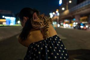 Bengal cat on the back of a girl in Taipei in Taiwan photo