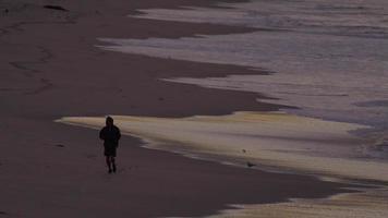 A man jogging on the beach at dawn. video
