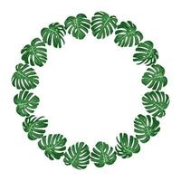 vector illustration. exotic tropical green leaves monstera. round frame.