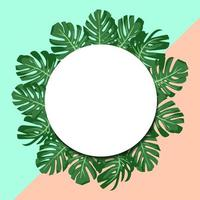 vector illustration. exotic tropical green leaves monstera. round paper banner. mint and pink background