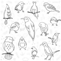 Vector outline set with illustrations of cute birds isolated on white background. Can be used as elemets for your design for greeting cards, nursery, poster, card, birthday party, packaging paper design, baby t-shirts prints