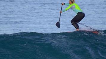 A woman rides an sup stand up paddleboard while surfing on a pink surfboard. video