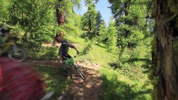 um grupo de ciclistas de montanha andando em uma floresta. video