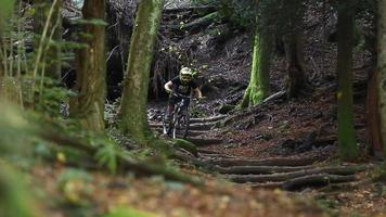 um homem pratica mountain bike em uma floresta. video
