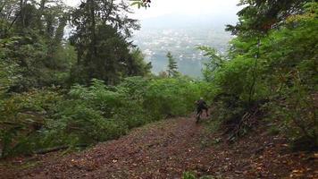 un homme fait du VTT dans une forêt. video