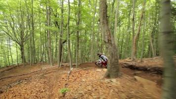 tiro de rastreamento de um homem mountain bike em uma floresta. video