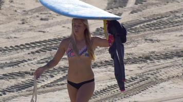 A young woman with a longboard surfboard putting on her wetsuit. video