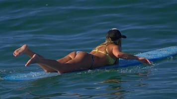 una mujer joven en bikini remando en una tabla de surf longboard. video