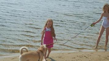 Mother and daughter run along the river bank with a dog Sunny summer day Family holiday video
