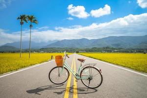 A Bicycle at Brown Avenue in Taitung, Taiwan photo