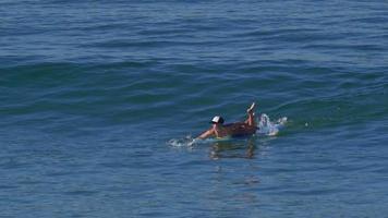 una mujer joven que practica surf en bikini en una tabla de surf longboard. video