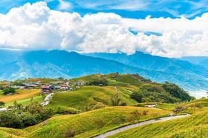 Granja de flores de azucenas en la montaña liushidan en hualien, taiwán foto