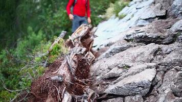 A man hiking and backpacking on a trail in the mountains. video