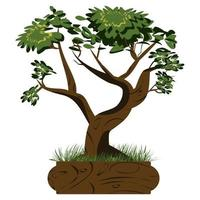 Bonsai tree. Japanese bonsai tree in the pot and with grass around. Plant icons isolated on white background. Detailed image. Vector