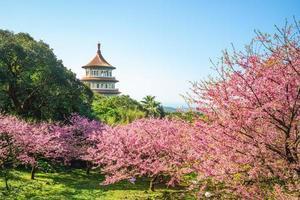 templo de wuji tianyuan en la ciudad de nueva taipei, taiwán. foto